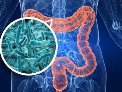 Mikrobioota ja tervis